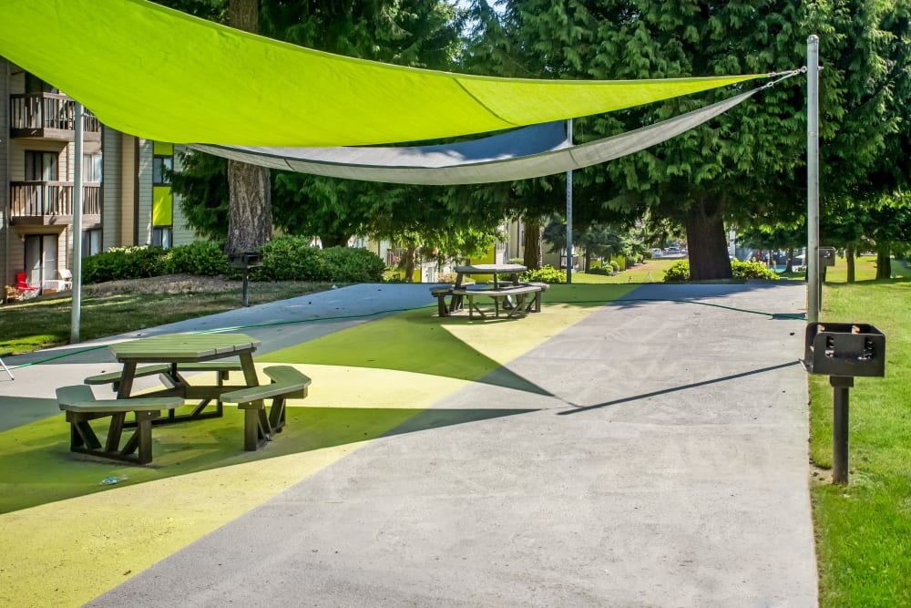 BBQ grills and picnic area underneath canopies at Terra Apartment Homes in Federal Way, Washington