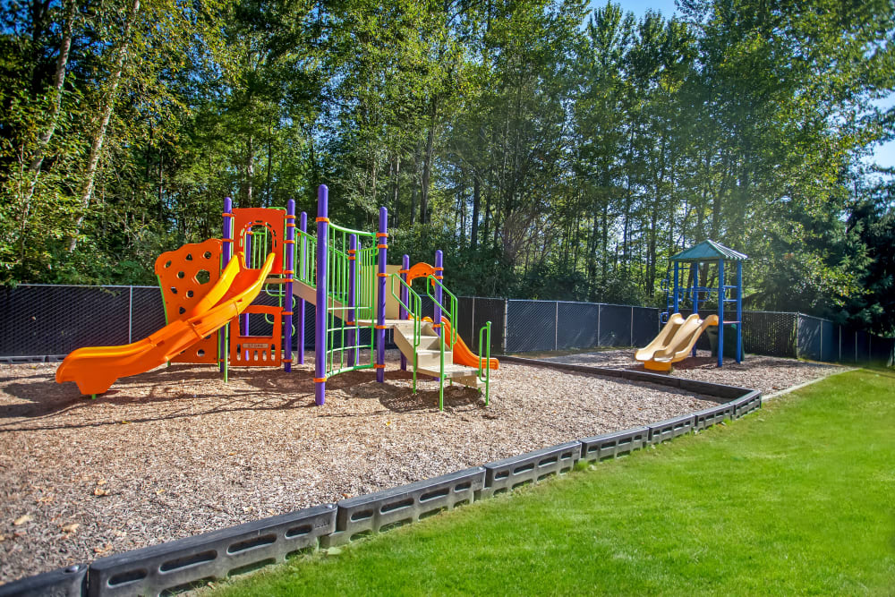 Children's outdoor playground area at Terra Apartment Homes in Federal Way, Washington