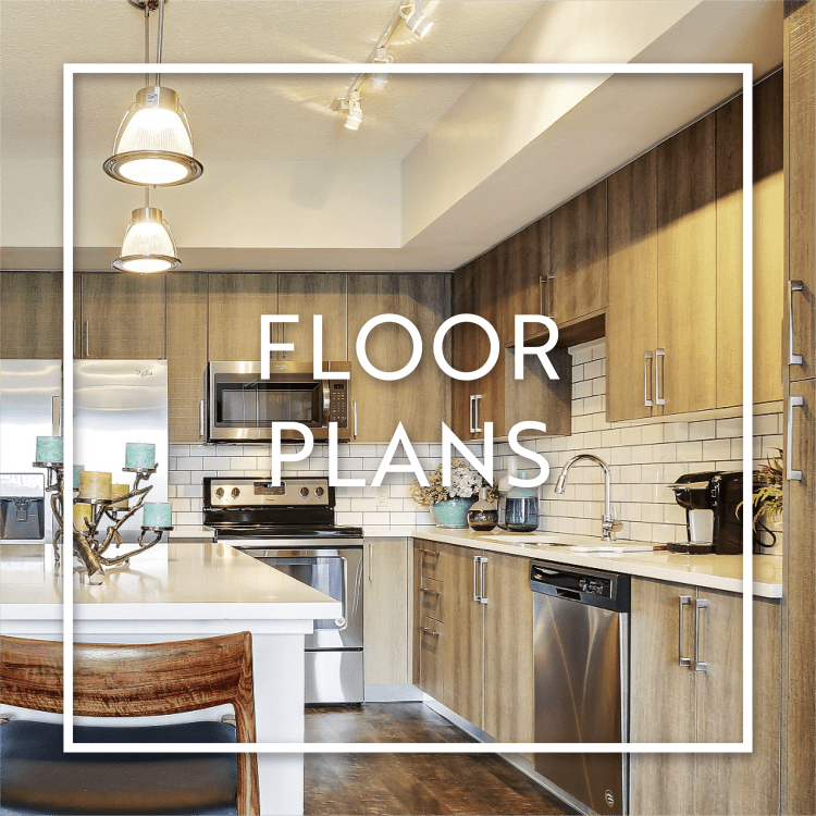 Learn more about our spacious and beautiful floor plans at Casa Vera