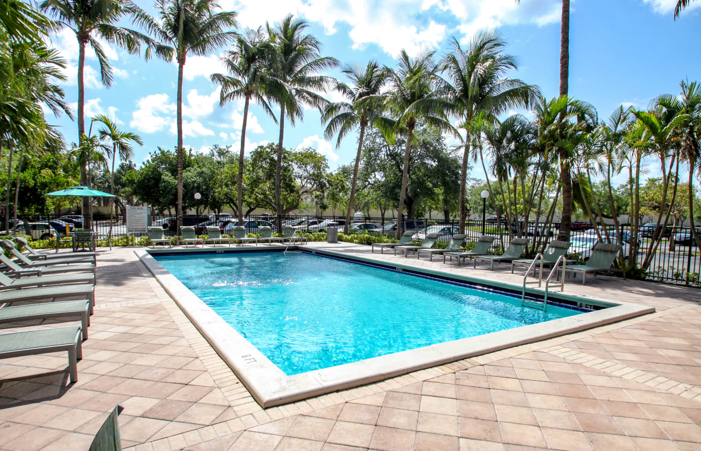 Beautiful sparkling swimming pool at Aliro in North Miami Beach, Florida