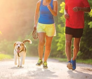 Residents on a run with their dog near Meadowbrook Apartments in Slingerlands, New York