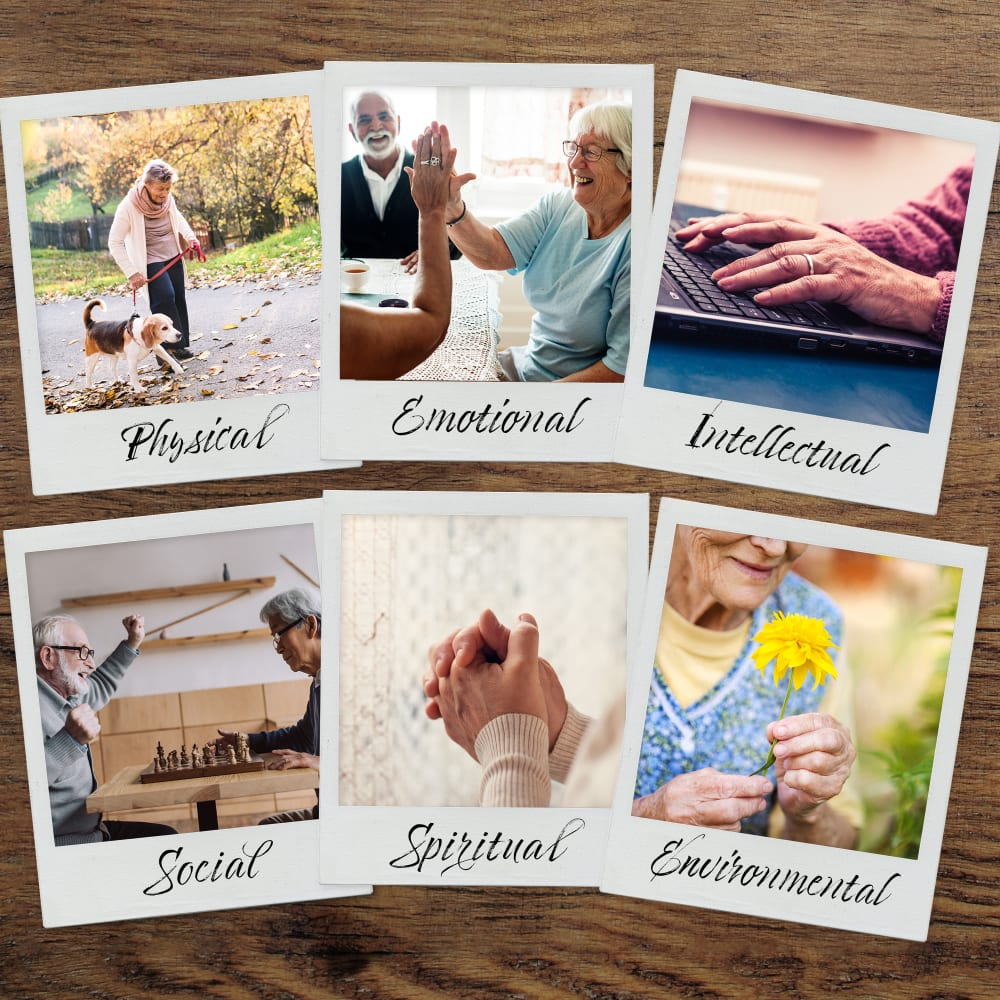 Graphic depicting polaroid photo memories Anthology Senior Living