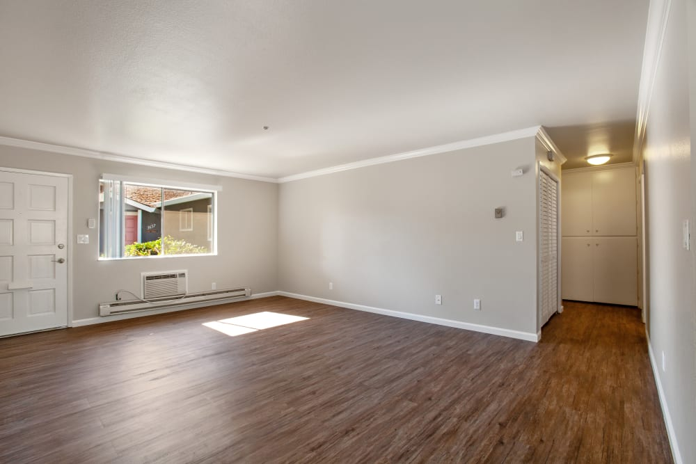 Enjoy Apartments with a Modern Living Room at Spring Lake Apartment Homes