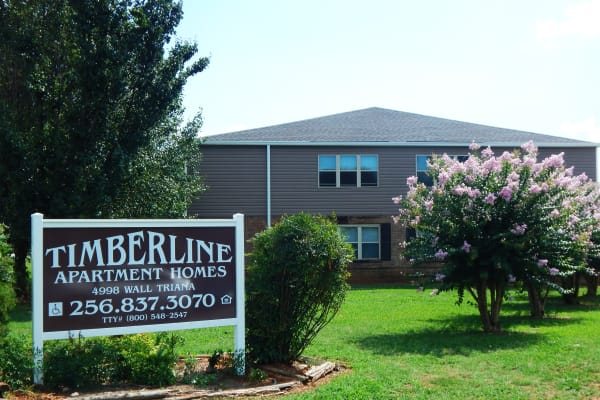 Timberline Apartments in Madison, Alabama