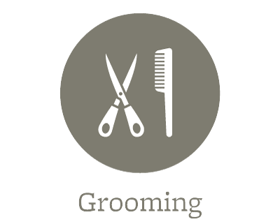 Learn more about the grooming services offered at Parkview Animal Hospital