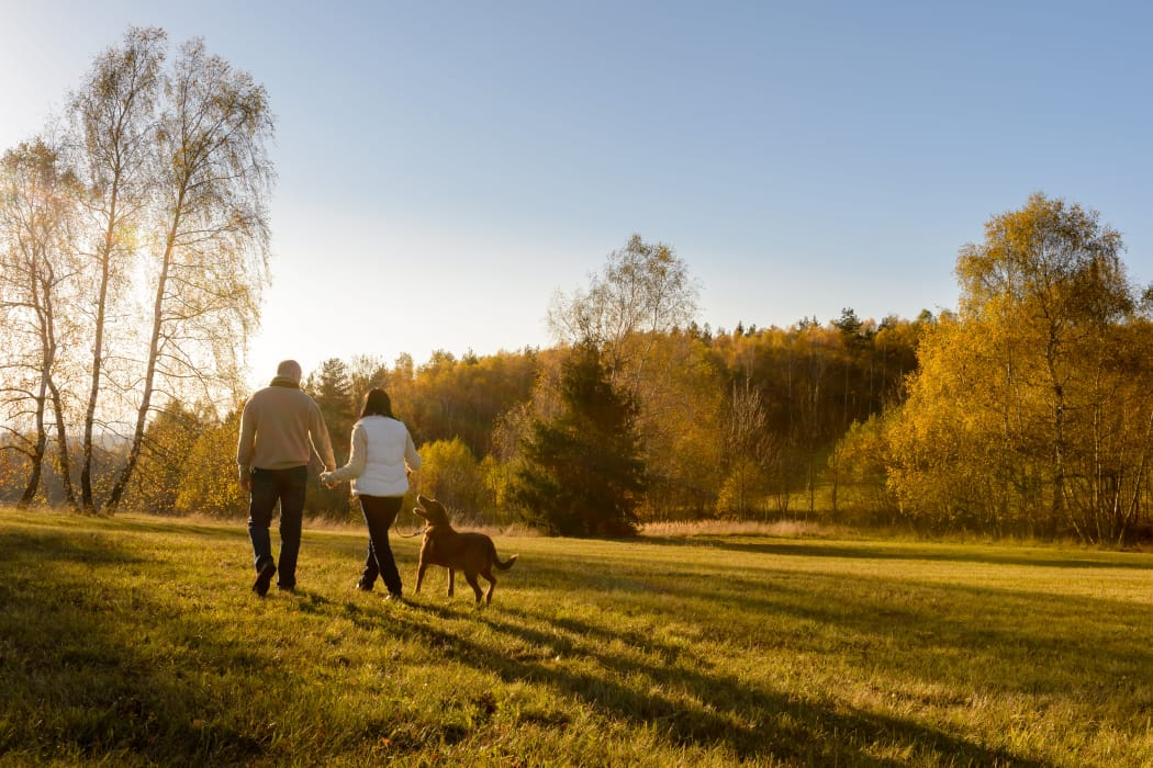 Residents out for a walk with their dog in the Kenwood Club at the Park neighborhood in Katy, TX