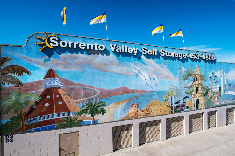 Famous San Diego freeway mural at Sorrento Valley Self Storage