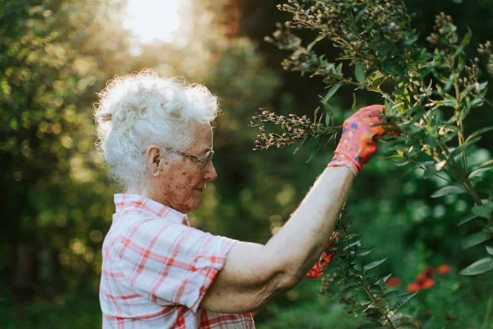 A resident gardening at Alura By Inspired Living in Rockledge, Florida.