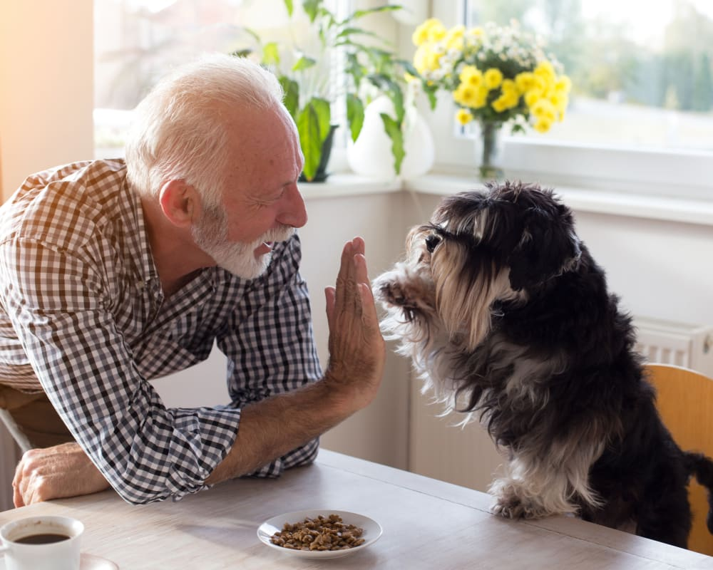 A resident and his dog in his pet-friendly apartment at Prairie Meadows Senior Living in Kasson, Minnesota.