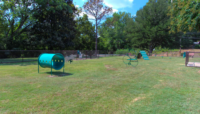dog park at Rollingwood luxury apartments