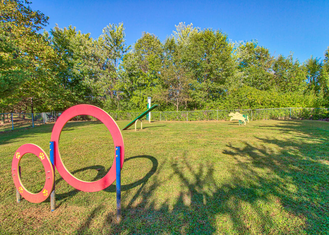 Dog Park at The Reserve at Ballenger Creek Apartments in Frederick, Maryland