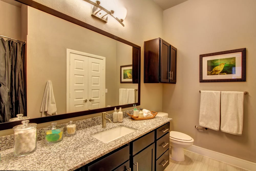 Bright bathroom with marble counter and wood cabinets at Marquis at Barton Trails in Austin, Texas