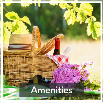 Amenities at Orchard View Senior Apartments in Rochester, NY