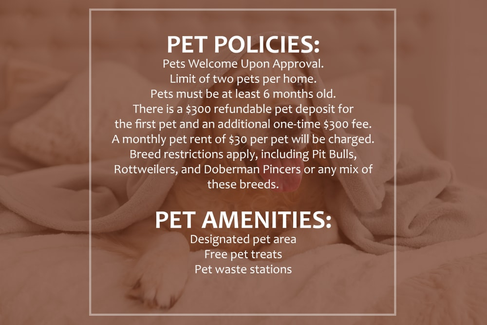 Photo of pet restrictions at 6 West Apartments in Edwards, Colorado