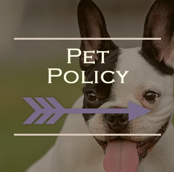 Pet friendly apartments in North Little Rock, Arkansas