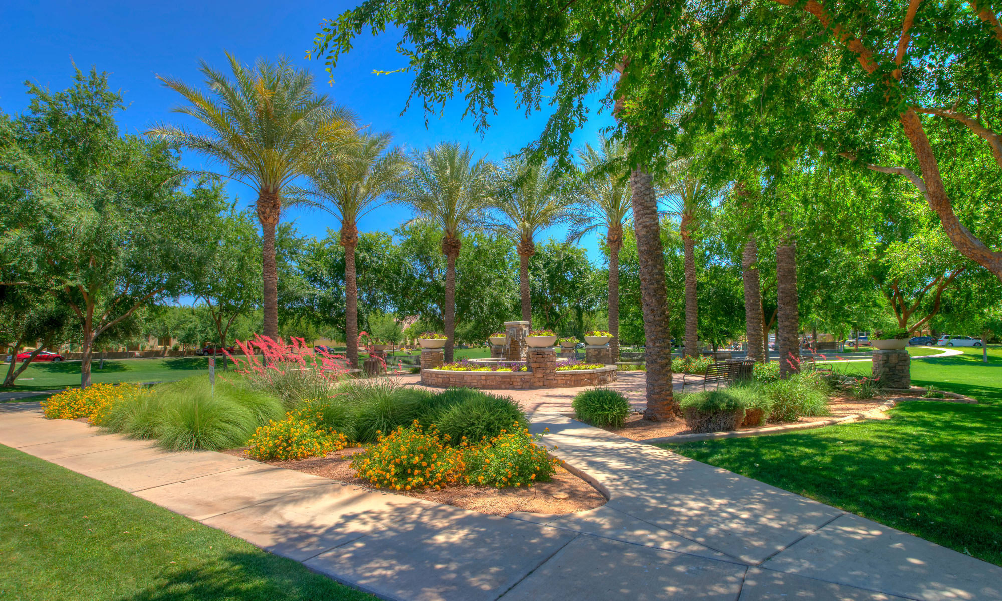 Townhomes in Gilbert, Arizona at BB Living at Higley Park