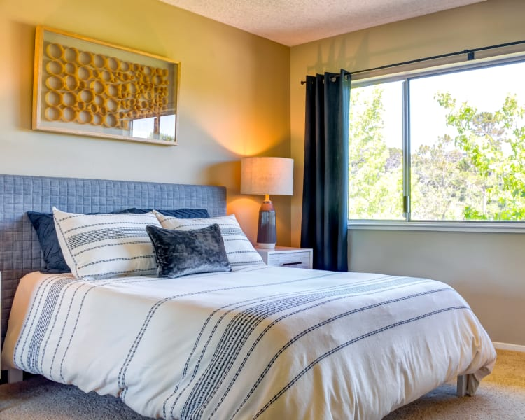 Bedroom with large, draped bay windows in a model home at Sofi Belmont Hills in Belmont, California