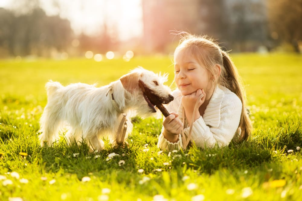 Little girl playing with her dog at Residences at The Triangle in Austin, Texas