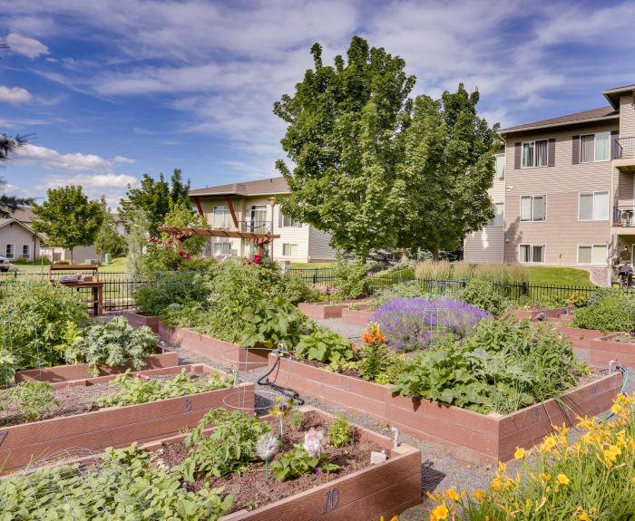 Lush community garden at Big Trout Lodge in Liberty Lake, WA