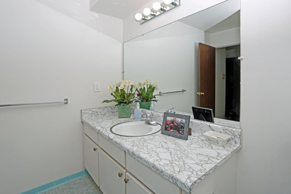 Our apartments in Roseville, Michigan showcase a luxury bathroom