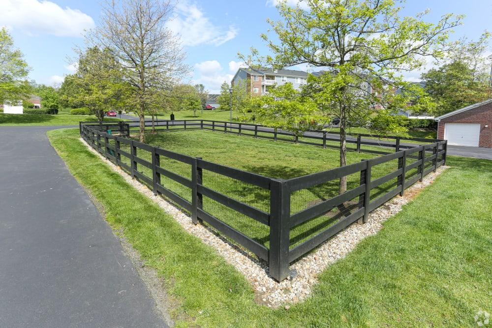 Shadow Ridge offers a Dog Park in Louisville, Kentucky