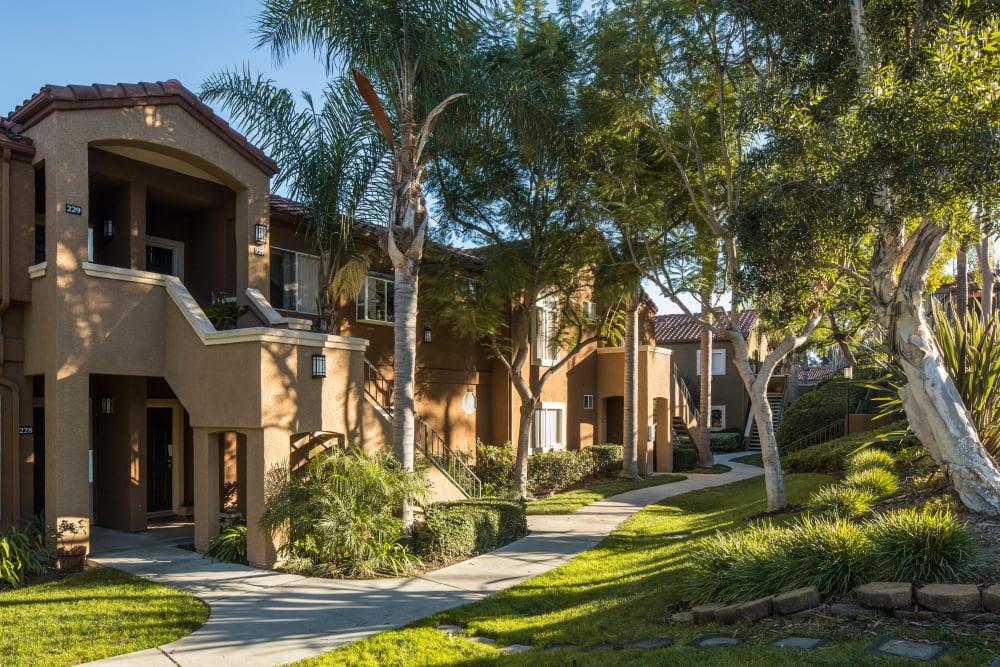 Beautiful walkway surrounded by trees at Niguel Summit Condominium Rentals in Laguna Niguel, California