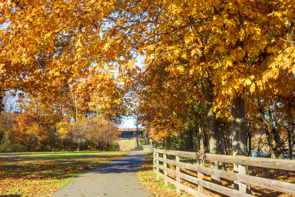 Beautiful view of a country road near Autumn Chase in Ellington, Connecticut