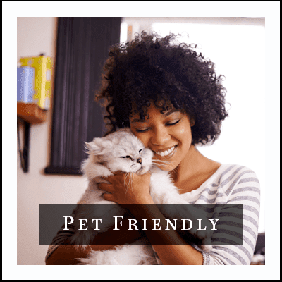 View the pet policy for GrandeVille at Malta in Malta, New York