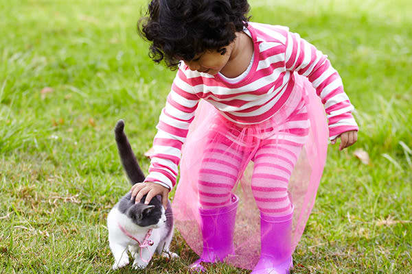 Have fun with your pets at Mississauga Place in Mississauga, ON