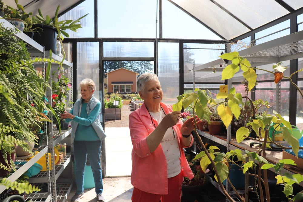 Two residents tending to the plants in the green house at The Springs at Greer Gardens in Eugene, Oregon.