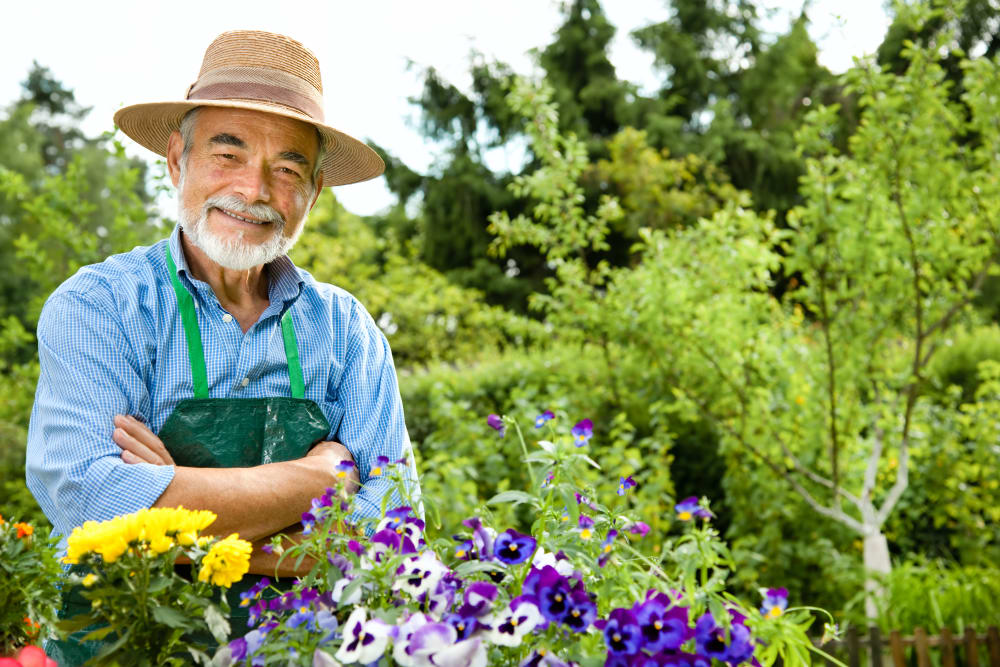Contact Honeysuckle Senior Living in Hayden, Idaho to learn more about our Programs.