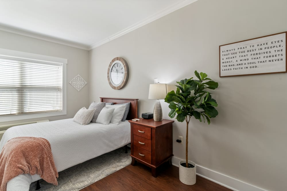 Spacious resident apartment at Truewood by Merrill, Powell in Powell, Tennessee