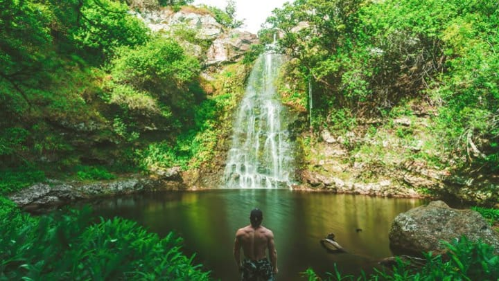 man facing a natural pool and waterfall in a jungle setting