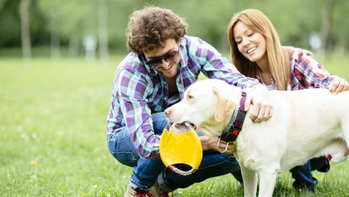 Residents playing with their dog at a local park near Olympus Grand Crossing Apartments in Katy, Texas
