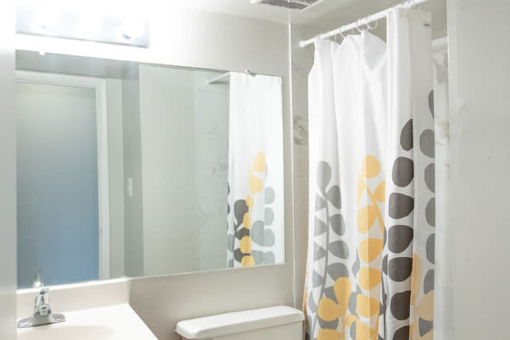 Large vanity mirror in an apartment home's bathroom at Eagle Rock Apartments at Towson in Towson, Maryland