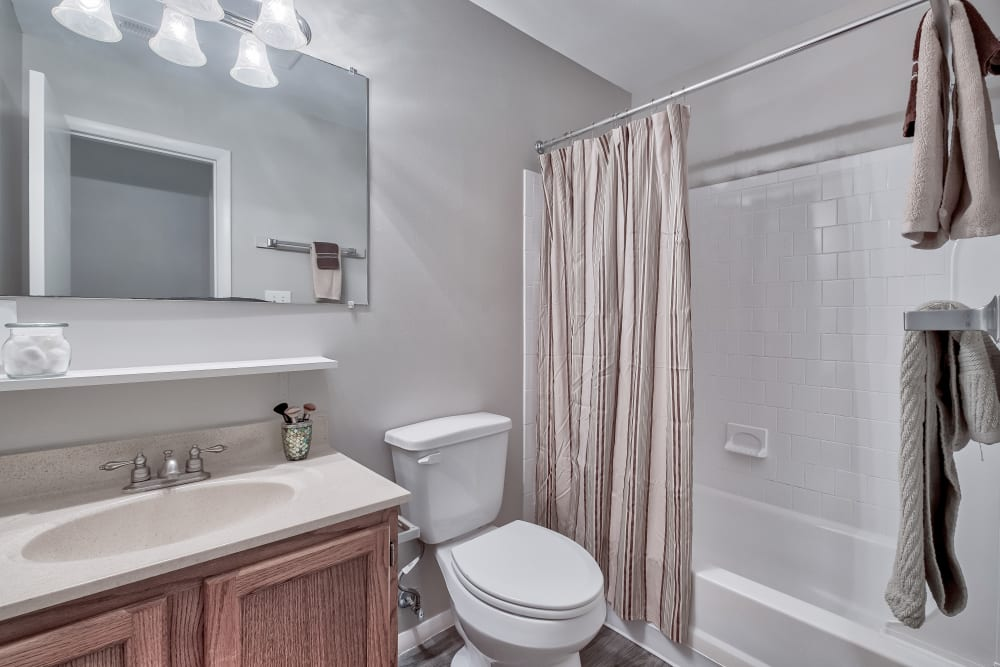 Bathroom at Woods of Williamsburg Apartments in Williamsburg, Virginia