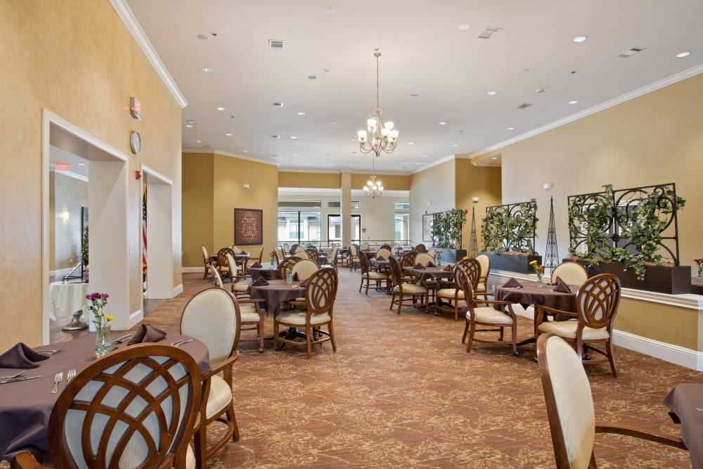 Restaurant style dining at Clayton Oaks Living in Richmond, Texas