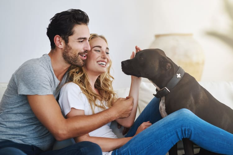 Resident  couple and their dog loving their new home at Lumen Apartments in Everett, Washington
