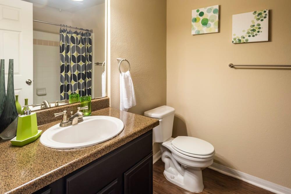 Bathroom at Apartments in San Antonio, Texas