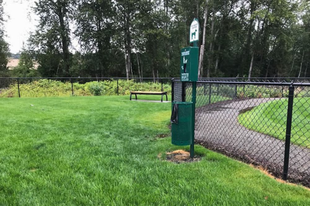 Fenced dog friendly play area at LARC at Kent, in {location_city}}, Washington