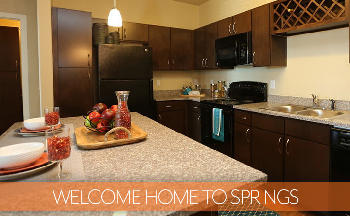 Luxury Kitchen at Springs at Alamo Ranch