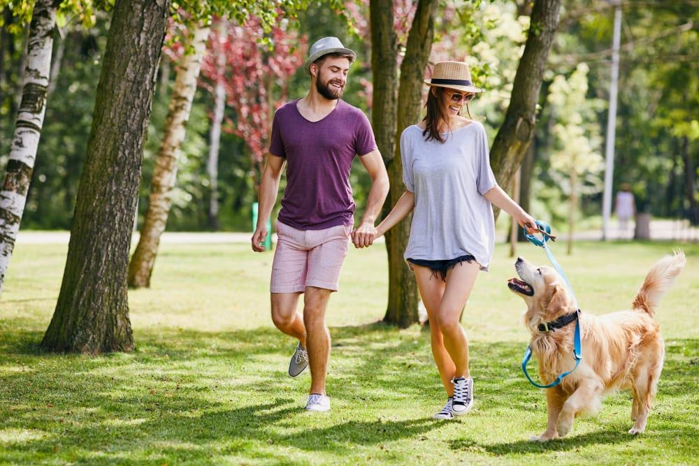 Resident couple and their dog playing on the beautifully landscaped grass outside at Canyon View in Las Vegas, Nevada