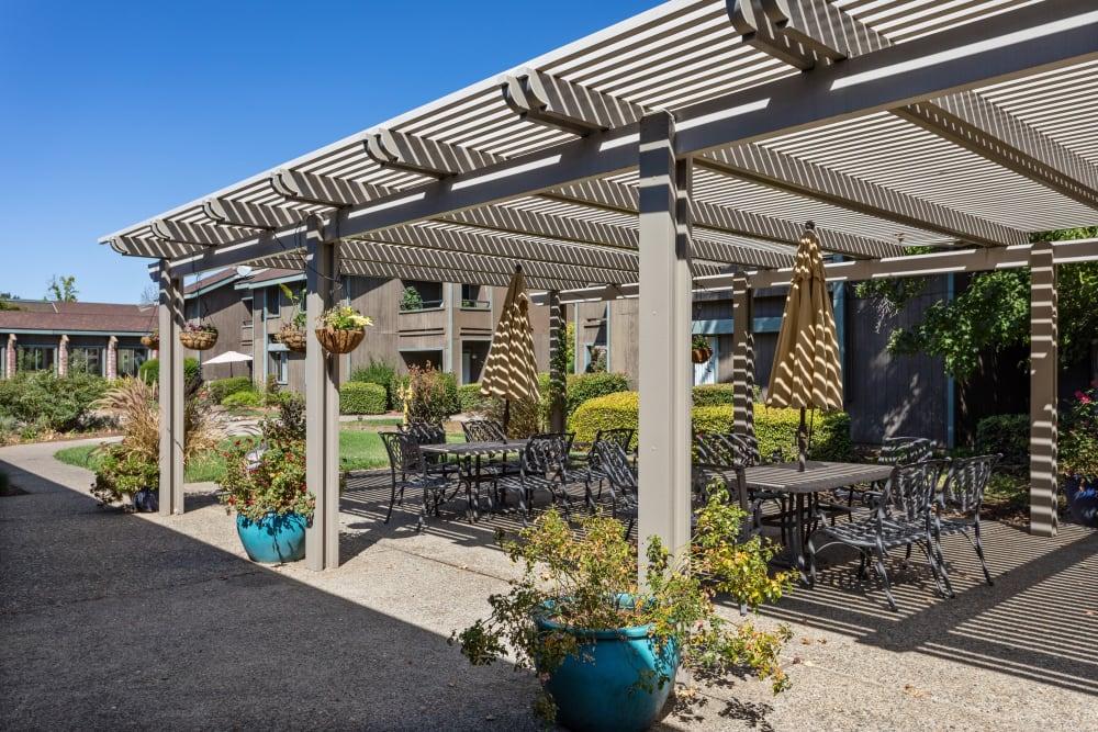 Patio with pergola and seating at The Atrium at Carmichael in Carmichael, California.
