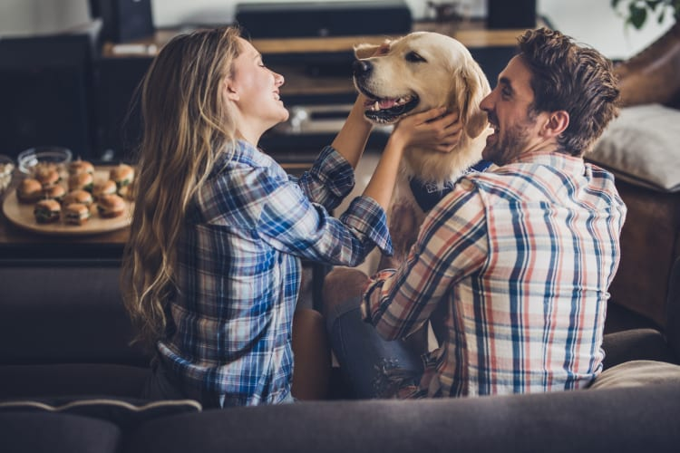 Young couple playing with their dog in their home at Waterford Trails in Spring, Texas