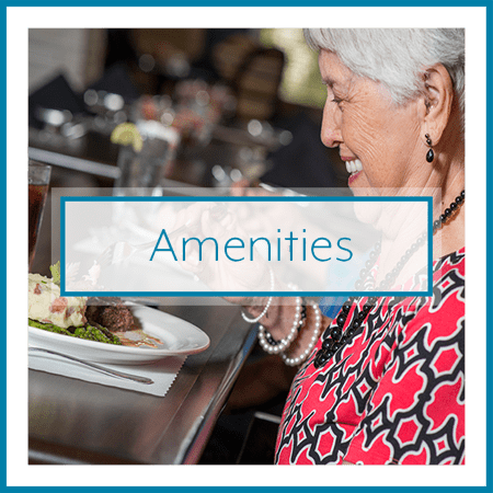 Amenities call out at The Landing at Stone Oak in San Antonio, Texas