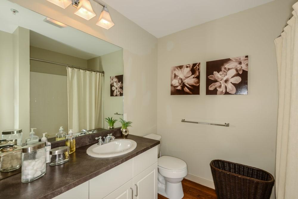 Bright bathroom at Sofi Danvers in Danvers, MA