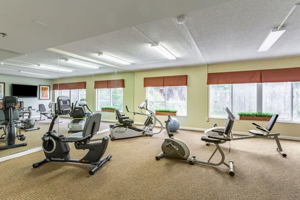 Exercise equipment at Grand Villa of Sarasota in Sarasota, Florida