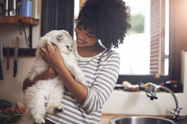 Woman adoring her cat in their new kitchen in Monmouth, Oregon near Southtown Apartments