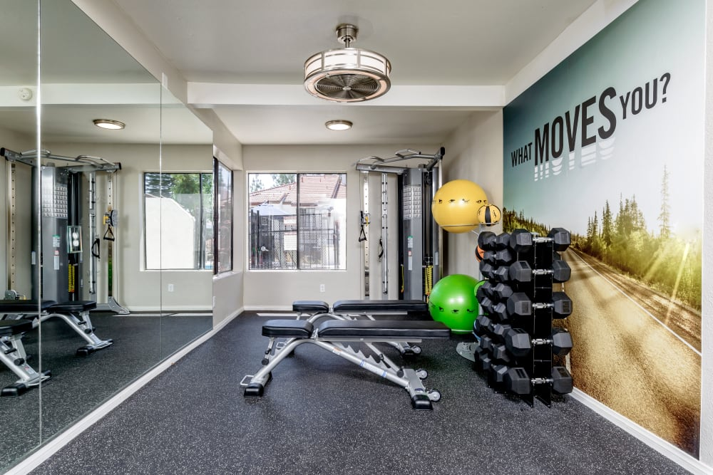 Fitness center with individual weights at Sonora at Alta Loma in Alta Loma, California