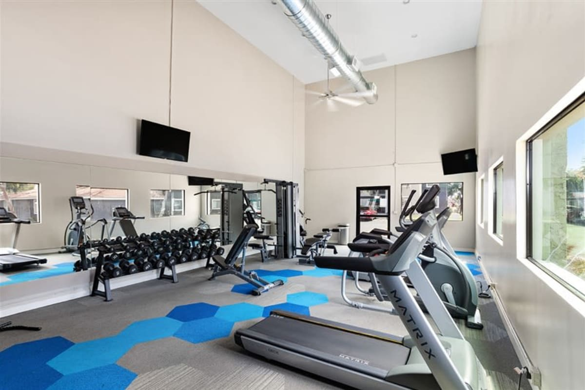 Fitness center at Argenta Apartments in Mesa, Arizona